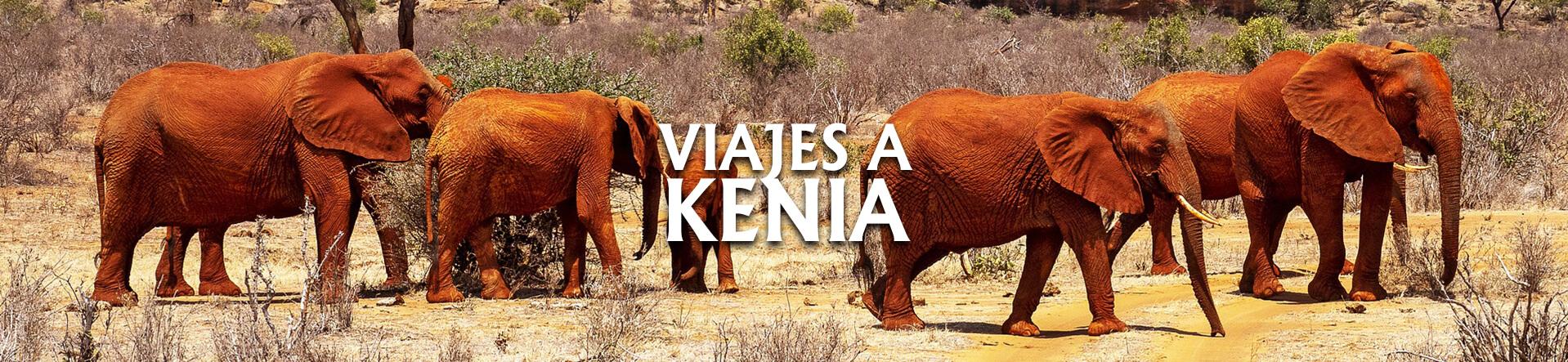 Kenia desde Argentina