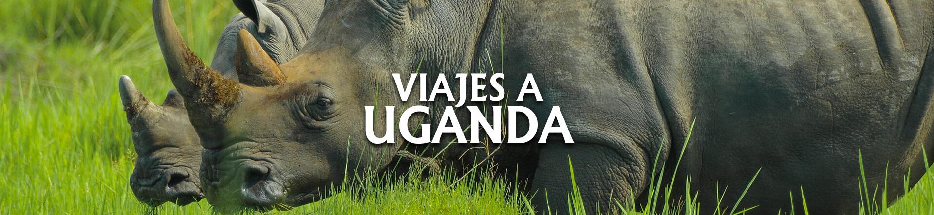 Uganda desde Argentina